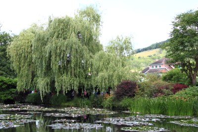 モネの庭4.JPG