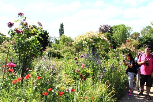 モネの庭5.JPG