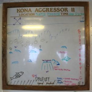 KONA-08.JPG